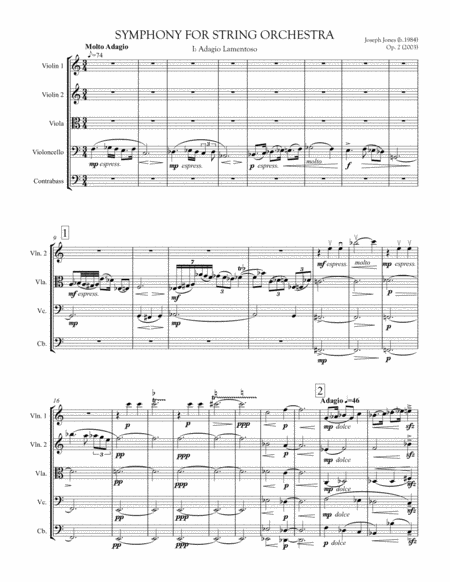 Symphony For String Orchestra Op 2